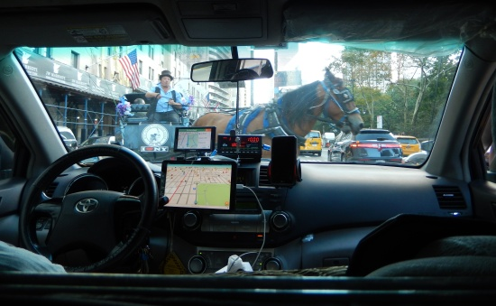 Horse in front of cab in NYC