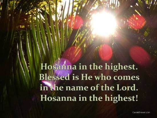 Hosanna in the highest FB.