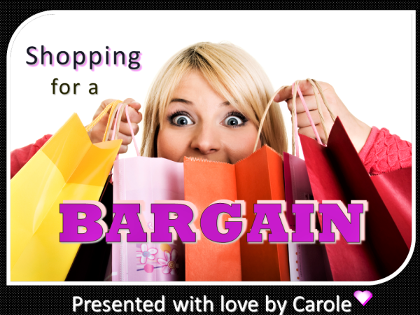 SHOPPING FOR A BARGAIN - title